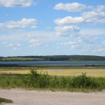 Green Goo on Muriel Lake - 4